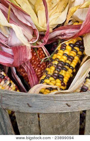 American Indian Corn In A Basket