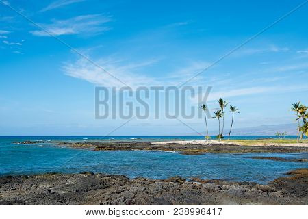 Tropical Paradise Amidst The Lava Flows And White Sand Beaches And Mauna Lani Bay On The Big Island