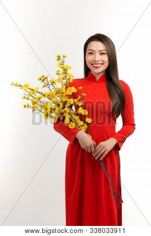 Beautiful Young Woman And Apricot Blossom, Vietnamese Tet Holiday Gettings