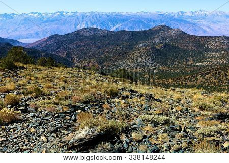 Arid Field On A Mountain Plateau Overlooking The Great Basin Desert Taken In The Desolate White Moun