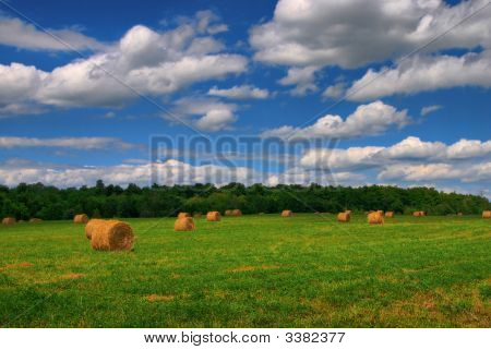 Hay Bales In The Sunshine
