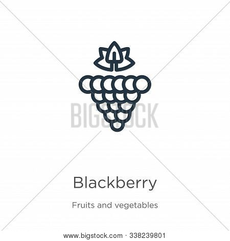 Blackberry Icon. Thin Linear Blackberry Outline Icon Isolated On White Background From Fruits And Ve