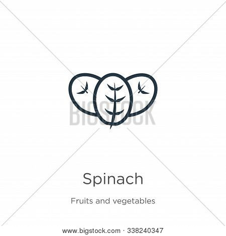Spinach Icon. Thin Linear Spinach Outline Icon Isolated On White Background From Fruits And Vegetabl