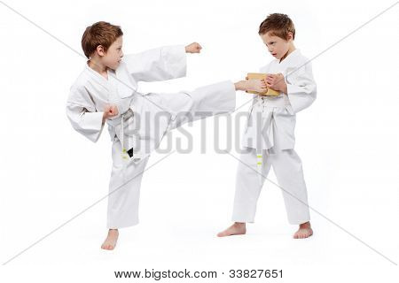Twin boys practicing karate, one of them holding a brick, another one kicking