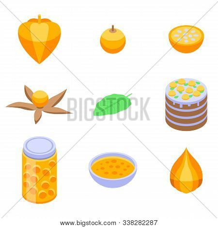 Physalis Icons Set. Isometric Set Of Physalis Vector Icons For Web Design Isolated On White Backgrou