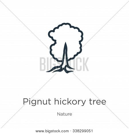 Pignut Hickory Tree Icon. Thin Linear Pignut Hickory Tree Outline Icon Isolated On White Background