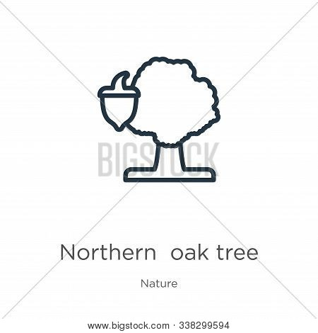 Northern Red Oak Tree Icon. Thin Linear Northern Red Oak Tree Outline Icon Isolated On White Backgro