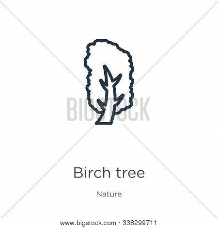 Yellow Birch Tree Icon. Thin Linear Yellow Birch Tree Outline Icon Isolated On White Background From