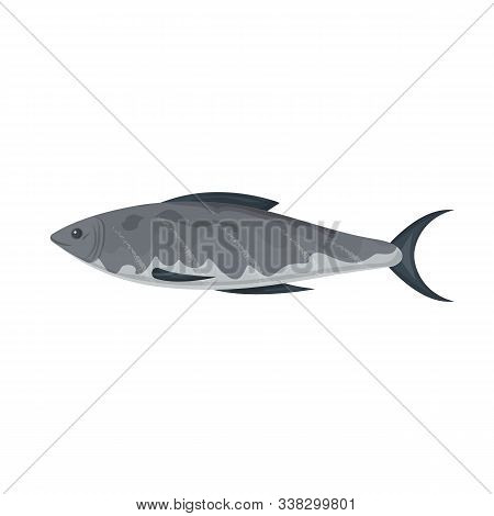 Sea Fish Vector Icon.cartoon Vector Icon Isolated On White Background Sea Fish.