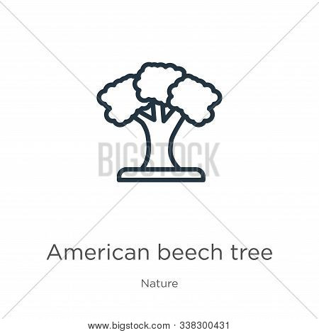 American Beech Tree Icon. Thin Linear American Beech Tree Outline Icon Isolated On White Background