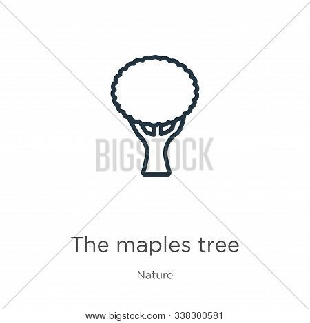 The Maples Tree Icon. Thin Linear The Maples Tree Outline Icon Isolated On White Background From Nat