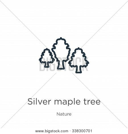 Silver Maple Tree Icon. Thin Linear Silver Maple Tree Outline Icon Isolated On White Background From