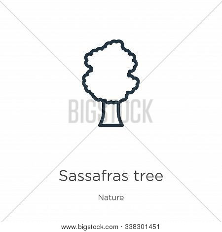 Sassafras Tree Icon. Thin Linear Sassafras Tree Outline Icon Isolated On White Background From Natur