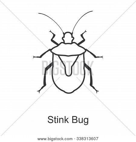 Stink Bug Vector Icon.line Vector Icon Isolated On White Background Stink Bug.