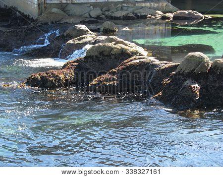 Pacific Ocean Coastline In Big Sur California