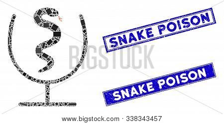 Mosaic Snake Poison Pictogram And Rectangle Snake Poison Seals. Flat Vector Snake Poison Mosaic Pict