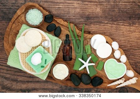 Aloe vera skin care natural vegan beauty treatment with cosmetic products on olive wood & oak. Soothes sunburn, has anti inflammatory properties, heals skin infections & wounds. Flat lay, top view.