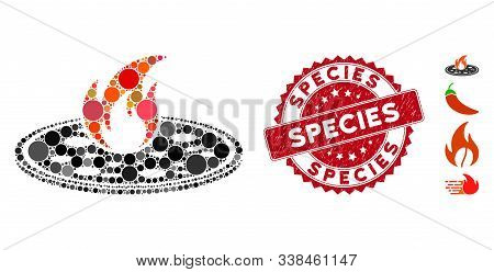 Mosaic Hot Pizza Icon And Rubber Stamp Seal With Species Text. Mosaic Vector Is Created With Hot Piz
