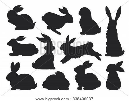 Bunny Pet Silhouette In Different Poses. Hare And Rabbit Collection. Vector Set Of Cute Rabbits In C