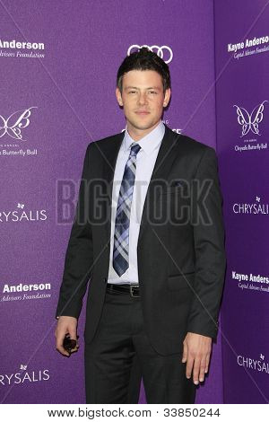 LOS ANGELES - JUNE 9: Cory Monteith at the 11th Annual Chrysalis Butterfly Ball held at a private residence on June 9, 2012 in Los Angeles, California