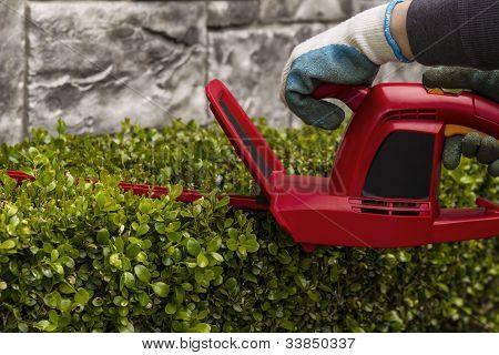 Power Hedger Trimming Hedges