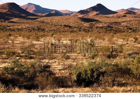 Arid Mojave Desert Plains With The Creosote Bush And Yucca Plants With Rugged Mountains Beyond Taken