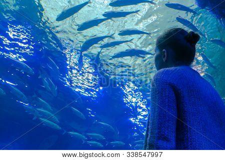 Portrait Of Woman Looking At Fish Vortex In Large Public Aquarium Tank At Oceanarium. Tourism, Educa