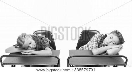 Bored Pupils Riot. Fall Asleep On Lesson. Girls Sleep School Lesson White Background. Schoolgirls Ti