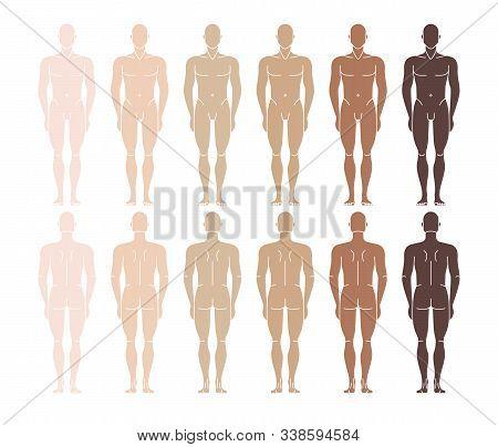 Vector Naked Mannequin Man. Standing Man Front Back Side.