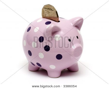 Piggy Coin In