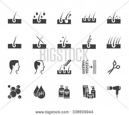 Hair Loss Treatment Flat Glyph Icons Set. Shampoo Ph, Dandruff, Hair Growth, Keratin, Conditioner Bo
