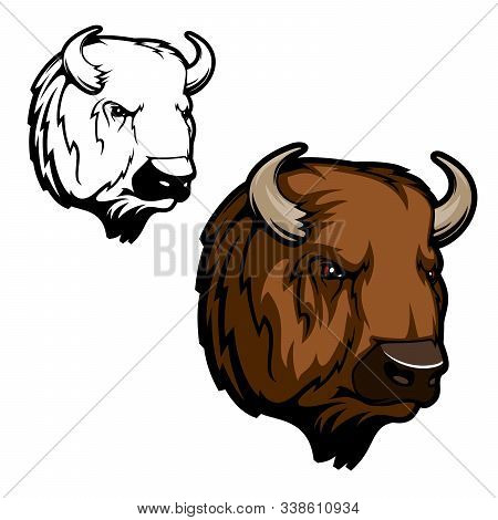 American Bison Or Buffalo Animal Vector Design Of Hunting Club, Sport Team Or Zoo Mascot. Head Of Wi