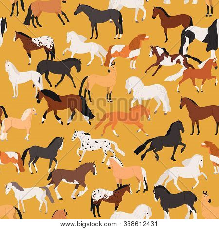 Horses Seamless Pattern Flat Vector Illustration. Mare And Stallion Of Different Breeds On Yellow Ba