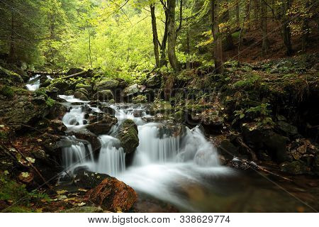 Forest stream Nature background Forest stream river Nature background Forest stream brook Nature background Forest stream spring deciduous trees water Nature background foliage leaves waterfall Nature background Natural environment Nature background.