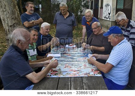 Seniors Play Cards