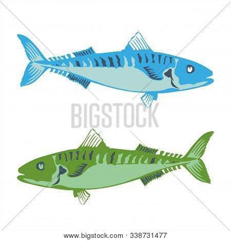 Barracuda Fish In The Sea Vector Logo And Illustration