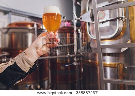 Mature Man Examining The Quality Of Craft Beer At Brewery. Inspector Working At Alcohol Manufacturin