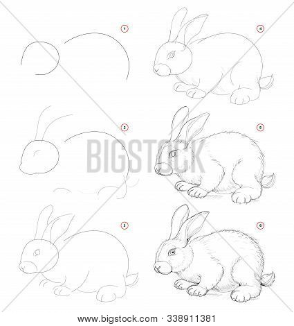 How To Draw From Nature Sketch Of Cute Little Rabbit. Creation Step By Step Pencil Drawing. Educatio