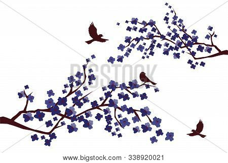 Vector Illustration Of Cherry Blossom Branches With Birds.