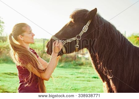 Young Beautiful Girl Stroking A Horse On A Sunny Day In The Open Vozduhonosnye