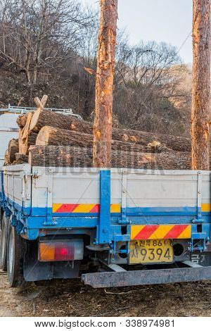 Truck Loaded With Cut Logs