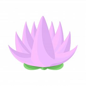 Isolated Object Of Flower And Lotus Symbol. Set Of Flower And Leaf Stock Symbol For Web.