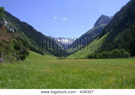 a meadow in tirol, austria poster