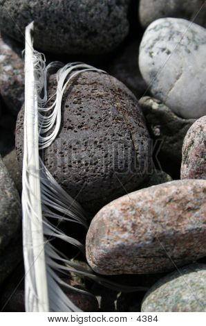 Rocks And Feather