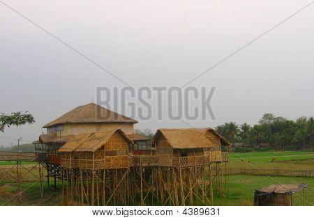 Stilt House On Bamboo Stem