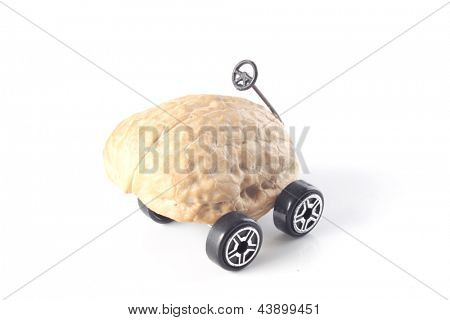 Photo of Driving me nuts - car