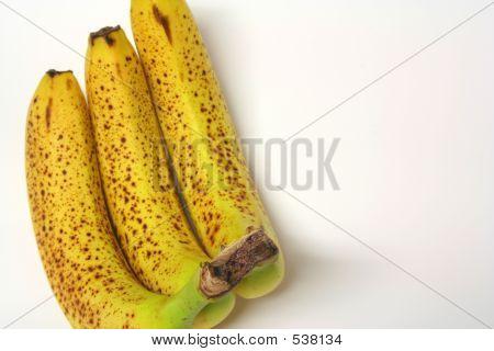 Rotten Bananas 1