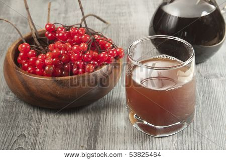 Guelder (arrowwood) Sirup