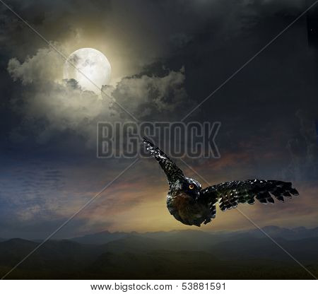 owl in the night sky. against the background of the Moon