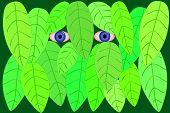 illustration of a stalker poster